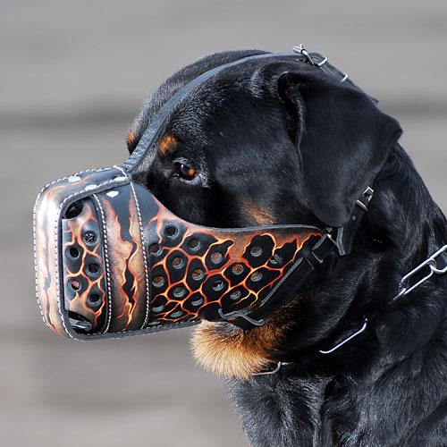 Museliere de frappe pour chien «Flots de lave» - M78