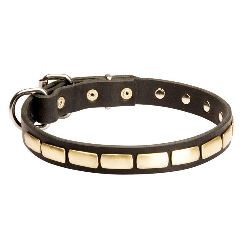 1cebe925f72c Collier pour chien en cuir blanc à bijoux de laiton «Luxe» - S25